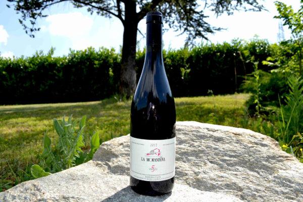 """bottiglia di vino """"la morandina"""" con paesaggio sul fondo-Agrisalumeria del Bosco"""