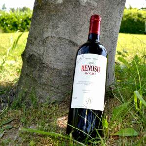Bottiglia di vino, appoggiata sul un tronco, prato sullo sfondo-Agrisalumeria del Bosco